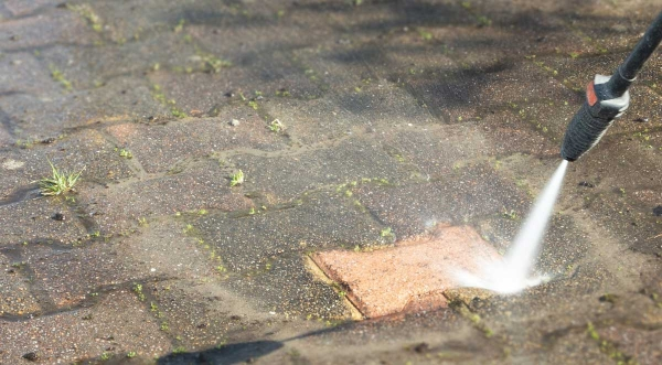 Outdoor Mold: Why it's Harmful and How Pressure Washing Can Help